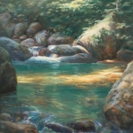 Forest Pool, Sunlight